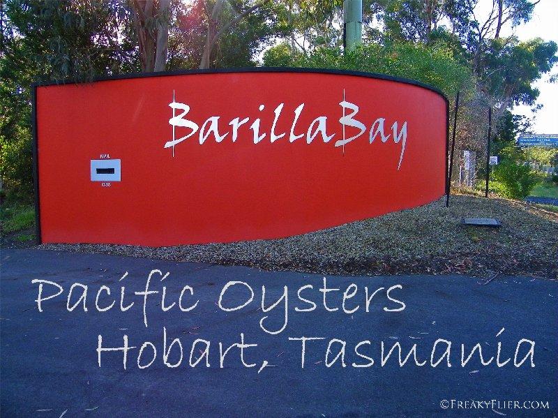 Barilla Bay Pacific Oysters, Hobart, Tasmania