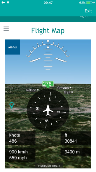 Inflight map on my iPhone